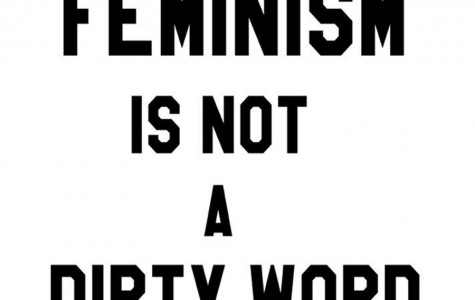 New feminist club inspires controversial discussion on social media