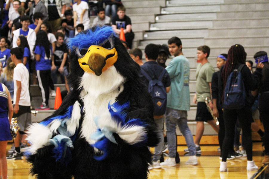 Harry the Hawk greets students as they walk through the gym doors.
