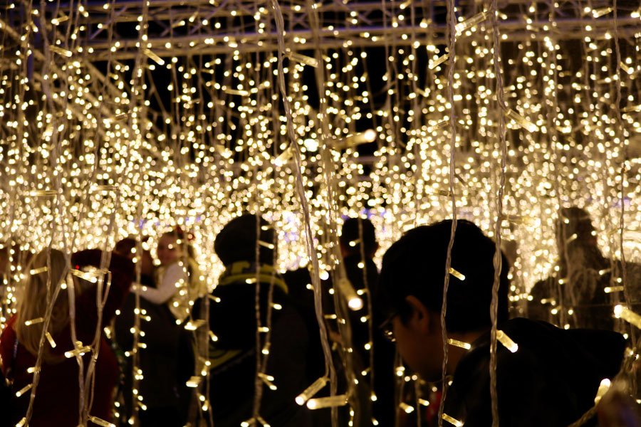 Towards+the+end+of+Enchant%2C+a+hanging+lights+exhibit+is+displayed+for+people+to+walk+through.