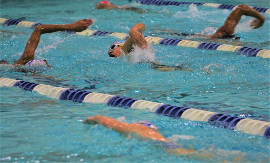 Swimmers+practice+their+strokes+with+partners+during+their+morning+practice+session.+The+swim+and+dive%27s+first+meet+was+the+GCISD+pentathlon+on+Sept.+29.