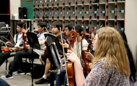 Orchestra to perform spring show tomorrow