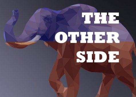 The Other Side: Gun Control