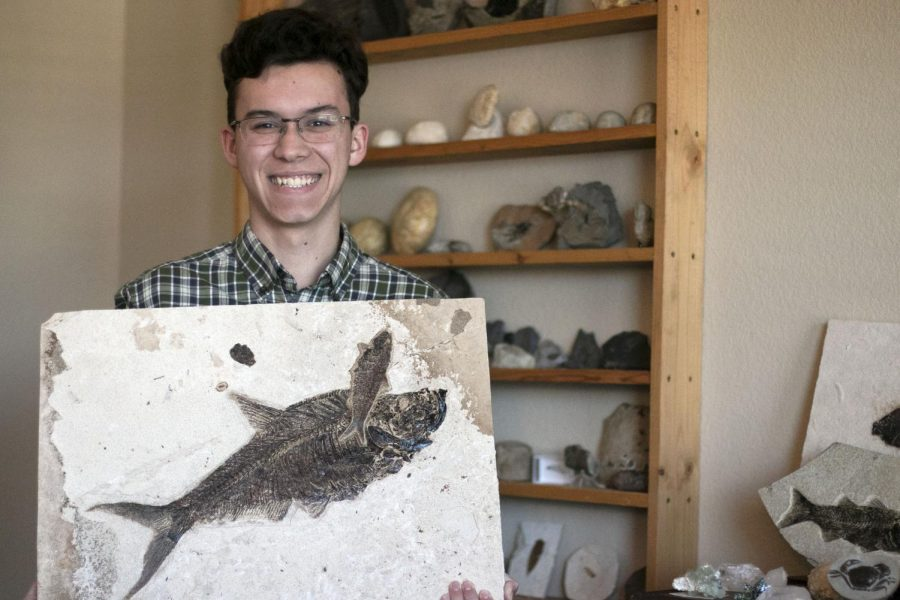 Junior David Howe stands in front of a shelf of fossils he and his dad have collected. He holds up a fossilized fish that his dad will be selling.