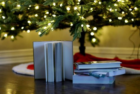 Books to read over winter break