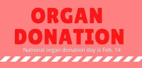 Infographic: Organ donation