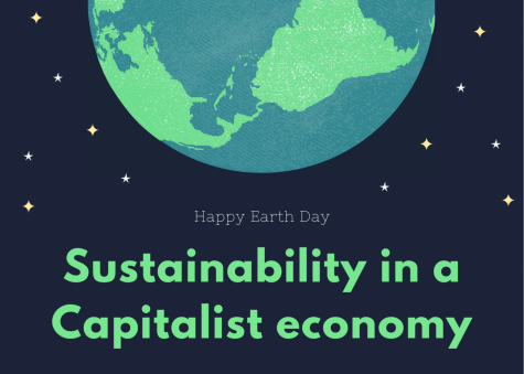 Sustainability in a Capitalist economy